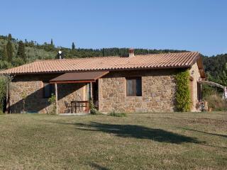 Ferienwohnung Il Saregeto kostenlos Reiten, Pool - Castiglion Fiorentino vacation rentals