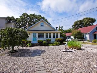 Nice House with Internet Access and A/C - Cape May Point vacation rentals