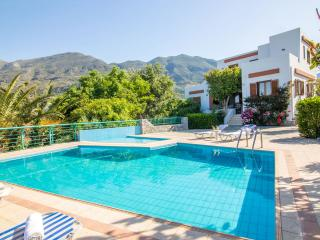 Villa with pool and nice view in southern Crete - Plakias vacation rentals