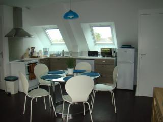 Golfe du Morbihan -Famille avec BB ou deux couples - Vannes vacation rentals