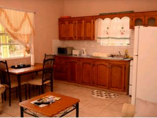 Cynthia's Apartment - Saint George's vacation rentals