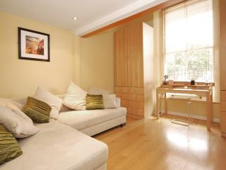 ONE BED APARTMENT PERFECTLY LOCATED IN NOTTING HIL - London vacation rentals