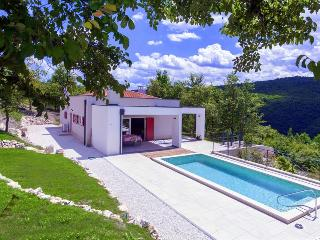 Montecolori - brand new design villa with pool in middle of nature - Vizinada vacation rentals