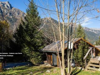 La Cabane aux Foret - Chamonix - Chamonix vacation rentals