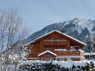 Chalet Sérénité - Chalet bookings only - Thollon-les-Memises vacation rentals