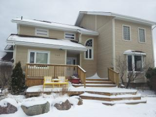GREAT LOCATION, LUXURY COTTAGE - Collingwood vacation rentals