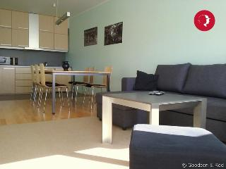 Spacious 1-Bedroom City Flat in The Centre of Tallinn - Tallinn vacation rentals