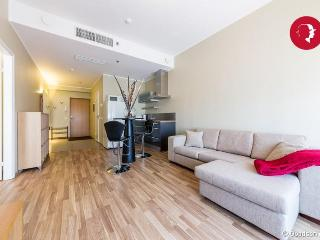 Spacious 1-Bedroom Flat in The Downtown of Tallinn - Tallinn vacation rentals