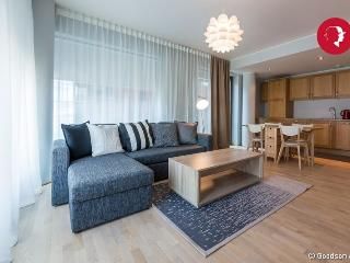 Executive Style 1-Bedroom Apartment in Rotermanni - Tallinn vacation rentals