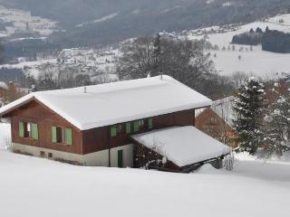 Nice Chalet with Internet Access and Satellite Or Cable TV - Villard vacation rentals