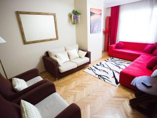 Spacious - Clean - very Econom - Istanbul vacation rentals