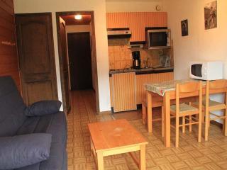 studio proche du centre et du Forme d'O - Chatel vacation rentals