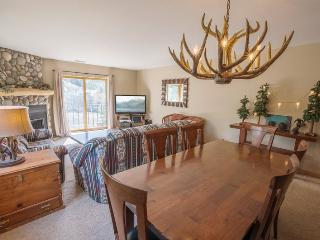 Accommodating Two Bedroom, Whiskey Towers #510 - Kirkwood vacation rentals