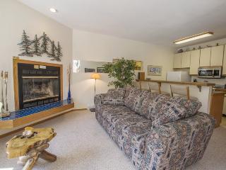 Comfortable One Bedroom, Sun Meadows Three #202 - Kirkwood vacation rentals