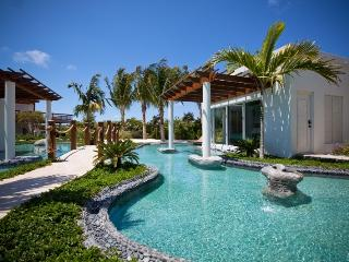 Perfect Villa with Internet Access and Television - Providenciales vacation rentals