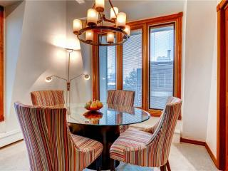 Perfect Condo with Internet Access and Mountain Views - Aspen vacation rentals