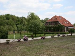 Luxe familievriendelijke Vakantieboerderij - Winterswijk vacation rentals