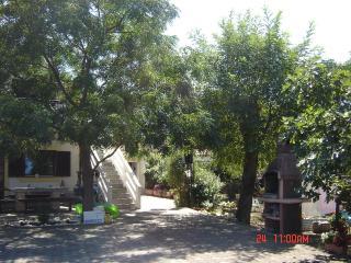 8272 Studio(2+1) - Privlaka - Privlaka vacation rentals