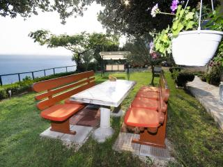 Cozy House with Internet Access and A/C - Tucepi vacation rentals