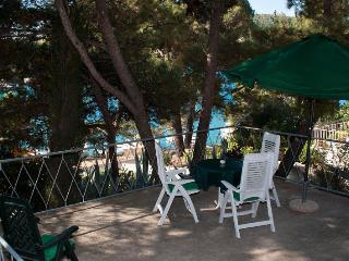 36521 H(4+1) - Primosten - Primosten vacation rentals