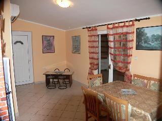 APP Roksandić - Apartment Petra (1501-1) - Vir vacation rentals