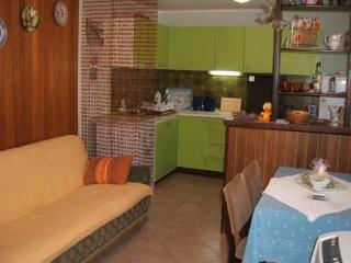 APP Roksandić - Apartment Suzana (1501-2) - Vir vacation rentals