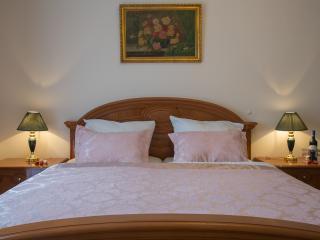 Premium - Apartments mit Alpenblick und Olympia Sk - Garmisch-Partenkirchen vacation rentals