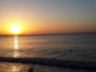 New, Furnished, 1 +1, Residance - Antalya vacation rentals