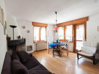Sauze d'Oulx flat with big terrace - Salice D'Ulzio vacation rentals