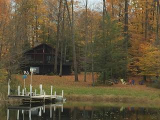 Comfy Cabin on Echo Pond - Sherman vacation rentals