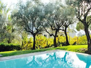 IMPERIALE pool and garden by KlabHouse - Santa Margherita Ligure vacation rentals