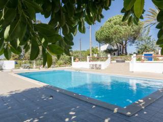 T1 + 1 Quinta do Lagar - Guia vacation rentals