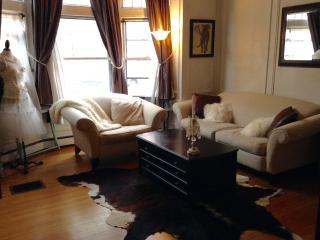 PERFECT BACK BAY LOCATION - Bkfst+Laptop+Phone - Boston vacation rentals