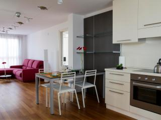 FO3T -Amazing apt with 360° terrace - Milan vacation rentals