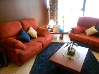 Cozy, well located 3 bed apartment - Mexico City vacation rentals