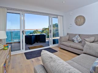 Osprey 4, The Cove located in Brixham, Devon - Brixham vacation rentals