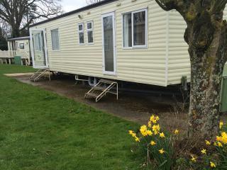 Caravan in the new forest hoburn bashley - Barton-on-Sea vacation rentals