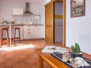 Finca Villanueva / Apt. Malvacia - Mala vacation rentals