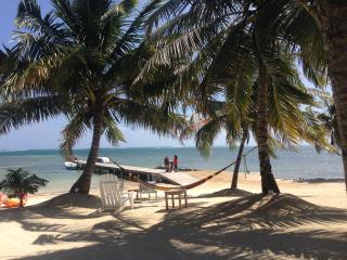 TROPICAL CASITA,  STEPS FROM THE CARRIBEAN SEA. ASK ABOUT JUNE PACKAGES - San Pedro vacation rentals