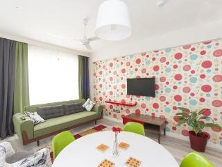 EastNCool Suite #3 very close to center - Istanbul vacation rentals