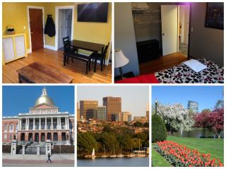 2BR Historic Boston (Beacon Hill) PENTHOUSE W/Deck - Boston vacation rentals