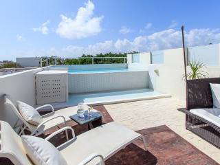3 Bedroom PENTHOSUE private pool, very near beach! - Playa del Carmen vacation rentals
