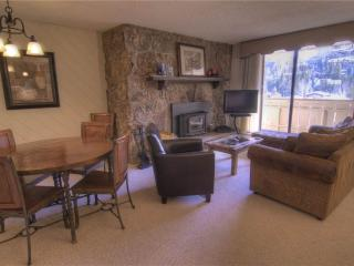 Charming Condo with Internet Access and Television - Vail vacation rentals