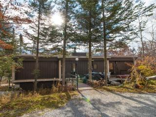 Bromley Forest-2 - East Dorset vacation rentals