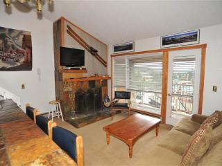 Cozy Breckenridge Condo rental with Internet Access - Breckenridge vacation rentals