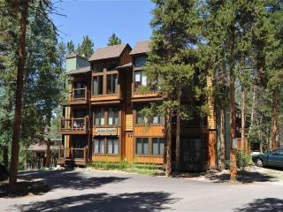 Economic In Town 1 Bedroom Condo - inner circle 6 - Breckenridge vacation rentals