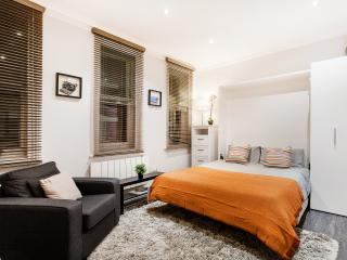 Beautiful Studio off Oxford Street - London vacation rentals