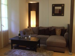 Jolie Duplex, 6 personnes, Centre Ville - Cauterets vacation rentals