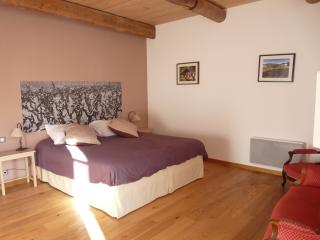 Nice 2 bedroom Montpeyroux Apartment with Internet Access - Montpeyroux vacation rentals