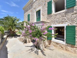 New renovated Dalmatian Villa with pool+JEEP incl - Gornje Selo vacation rentals